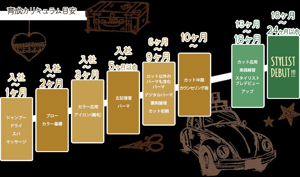 【イラスト】育成カリキュラム目安